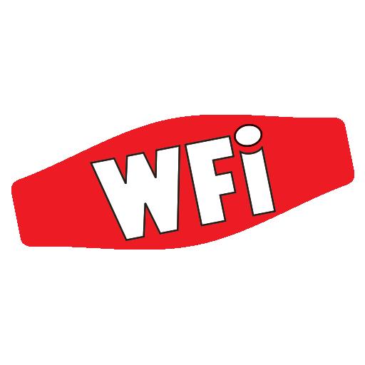 WFI Auto Detailing